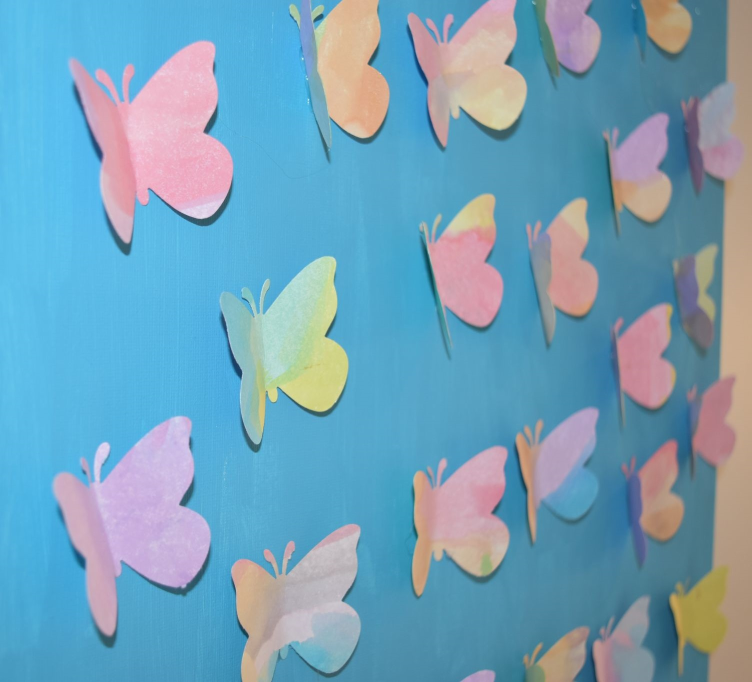 tableau-papillons-detail